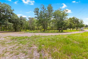 13716 Glen Harwell Rd, Dover, FL 33527, US Photo 17