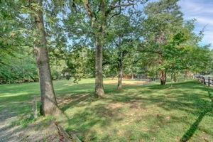 901 S Randolph St, Arlington, VA 22204, USA Photo 38