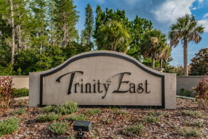18-Trinity East