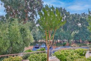 360 N Civic Dr, Walnut Creek, CA 94596, USA Photo 4