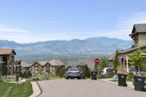 10614 Star Thistle Ct, Highlands Ranch, CO 80126, US Photo 47