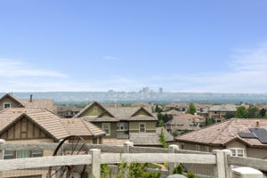10614 Star Thistle Ct, Highlands Ranch, CO 80126, US Photo 46