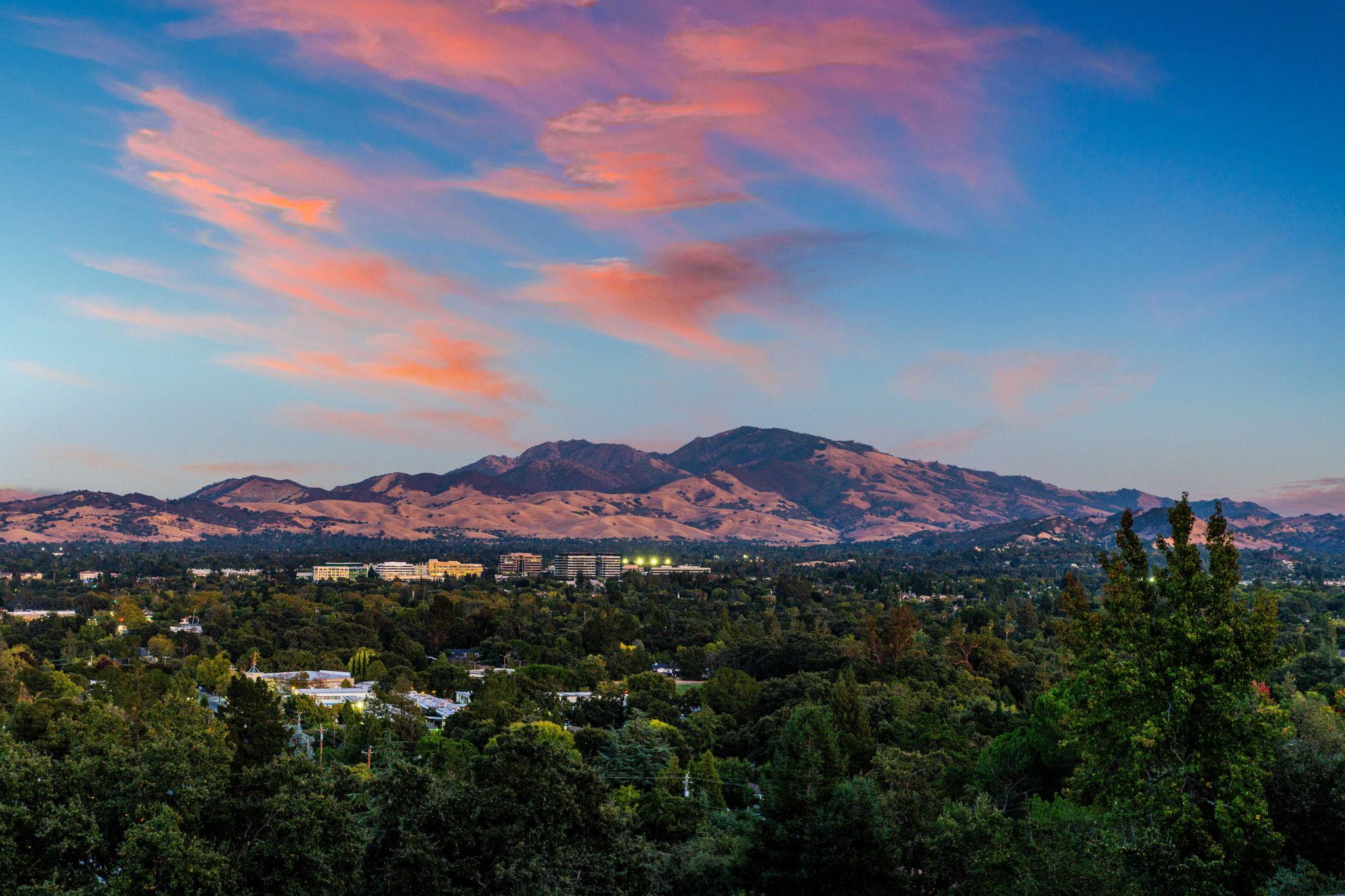Stately Mt Diablo - take a hike