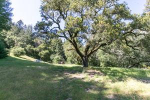 14293 Bear Creek Rd, Boulder Creek, CA 95006, US Photo 43