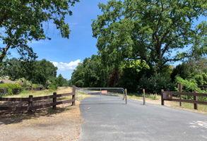 1560 W Ramona Way, Alamo, CA 94507, USA Photo 50