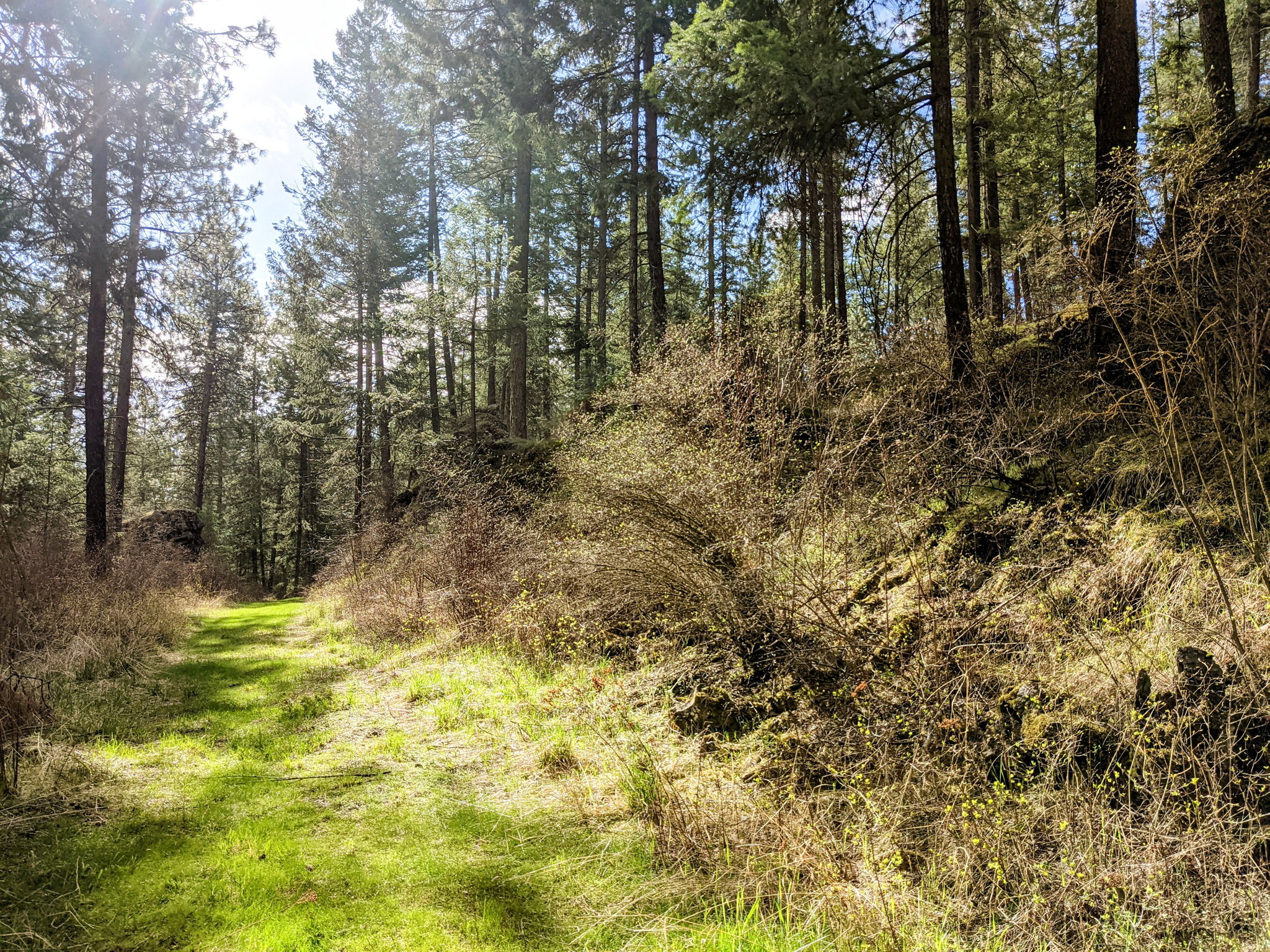 Hiking Trails On Property