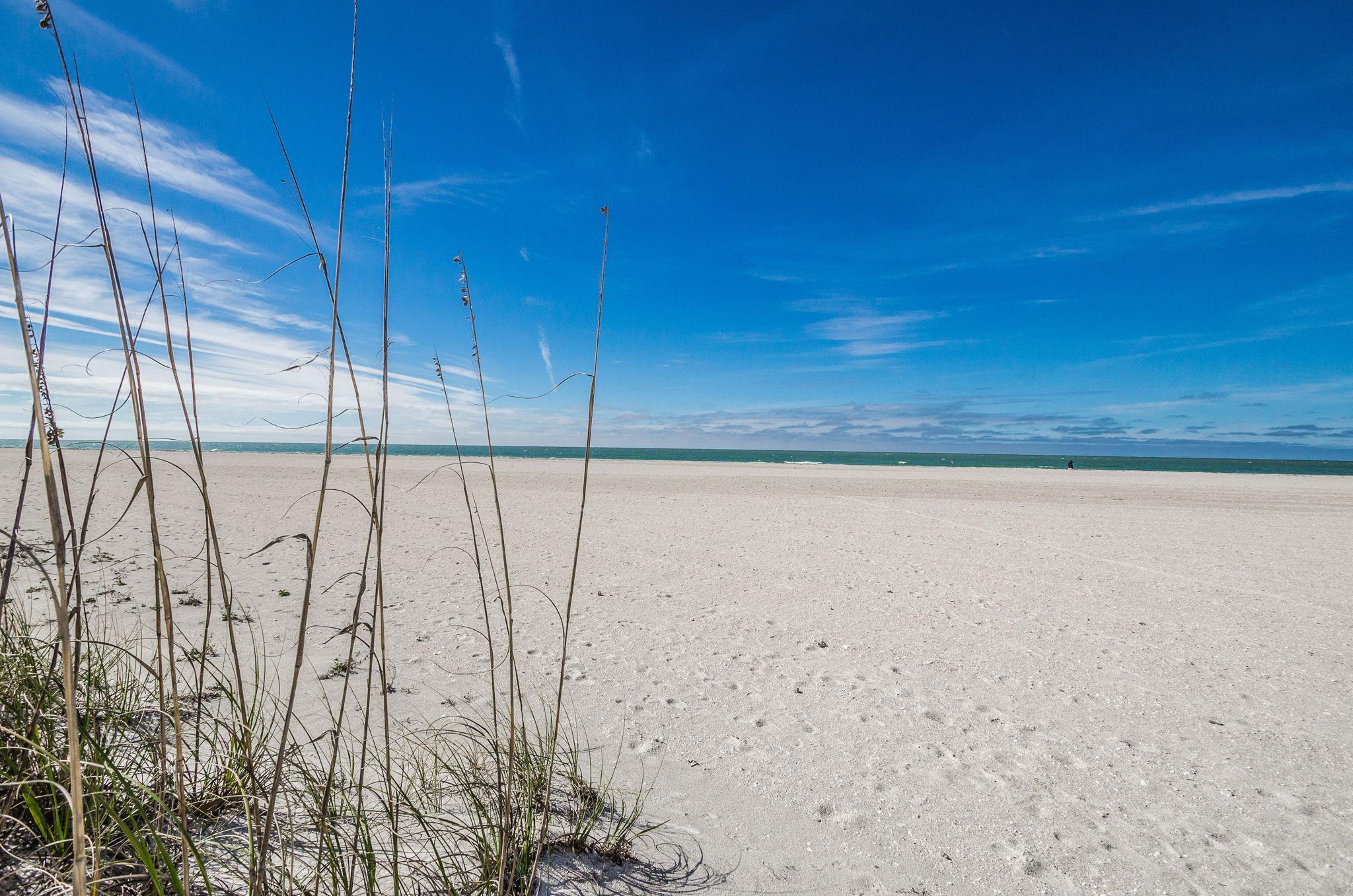 23-Sand  Key Club Beach