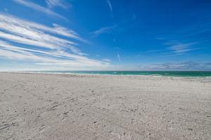 24-Sand  Key Club Beach