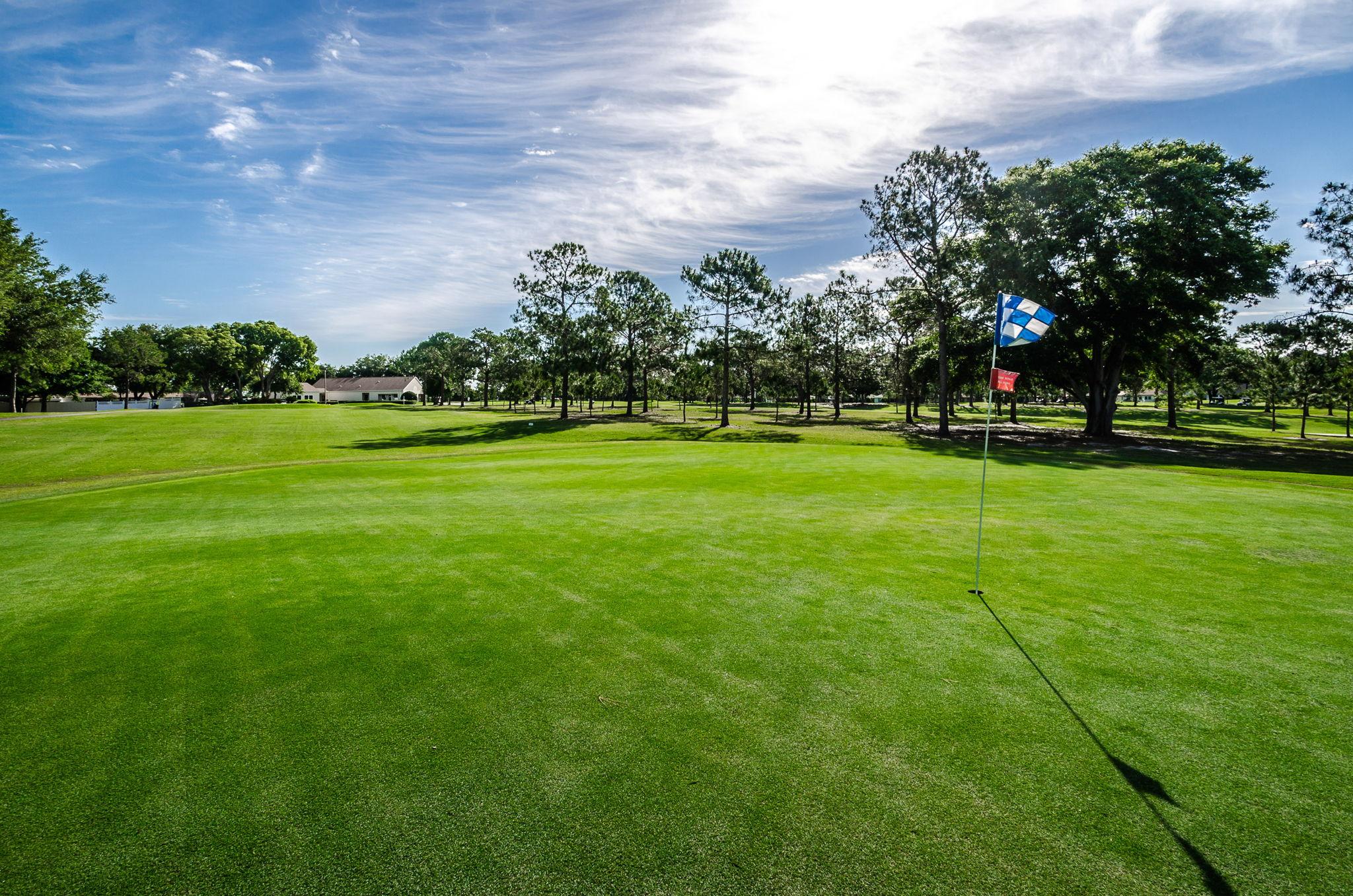 41-Golf Course