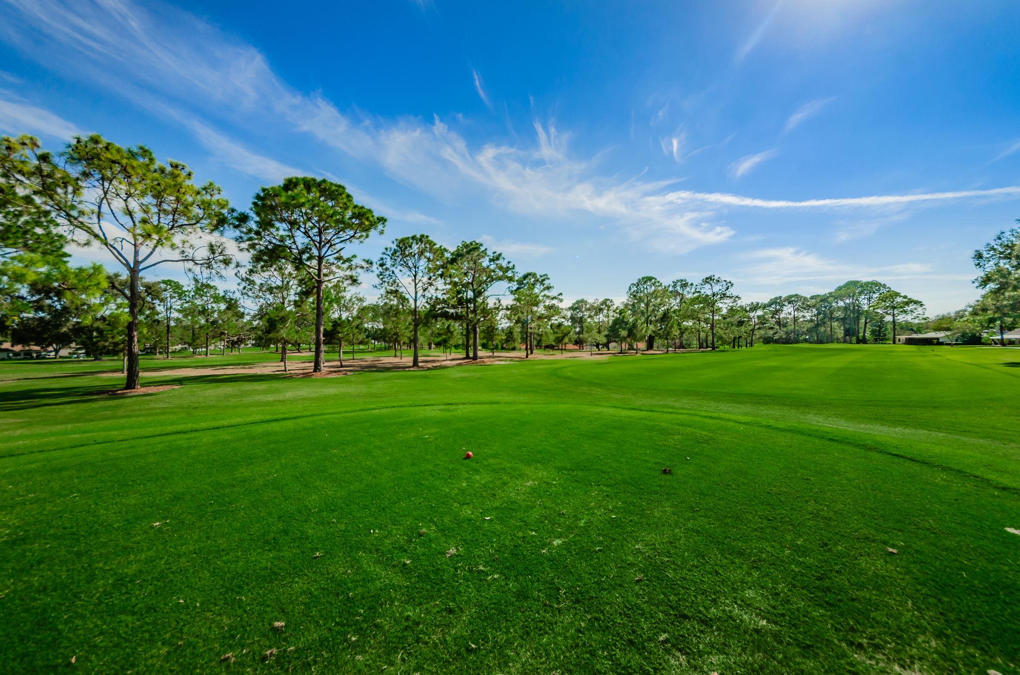 48-Golf Course