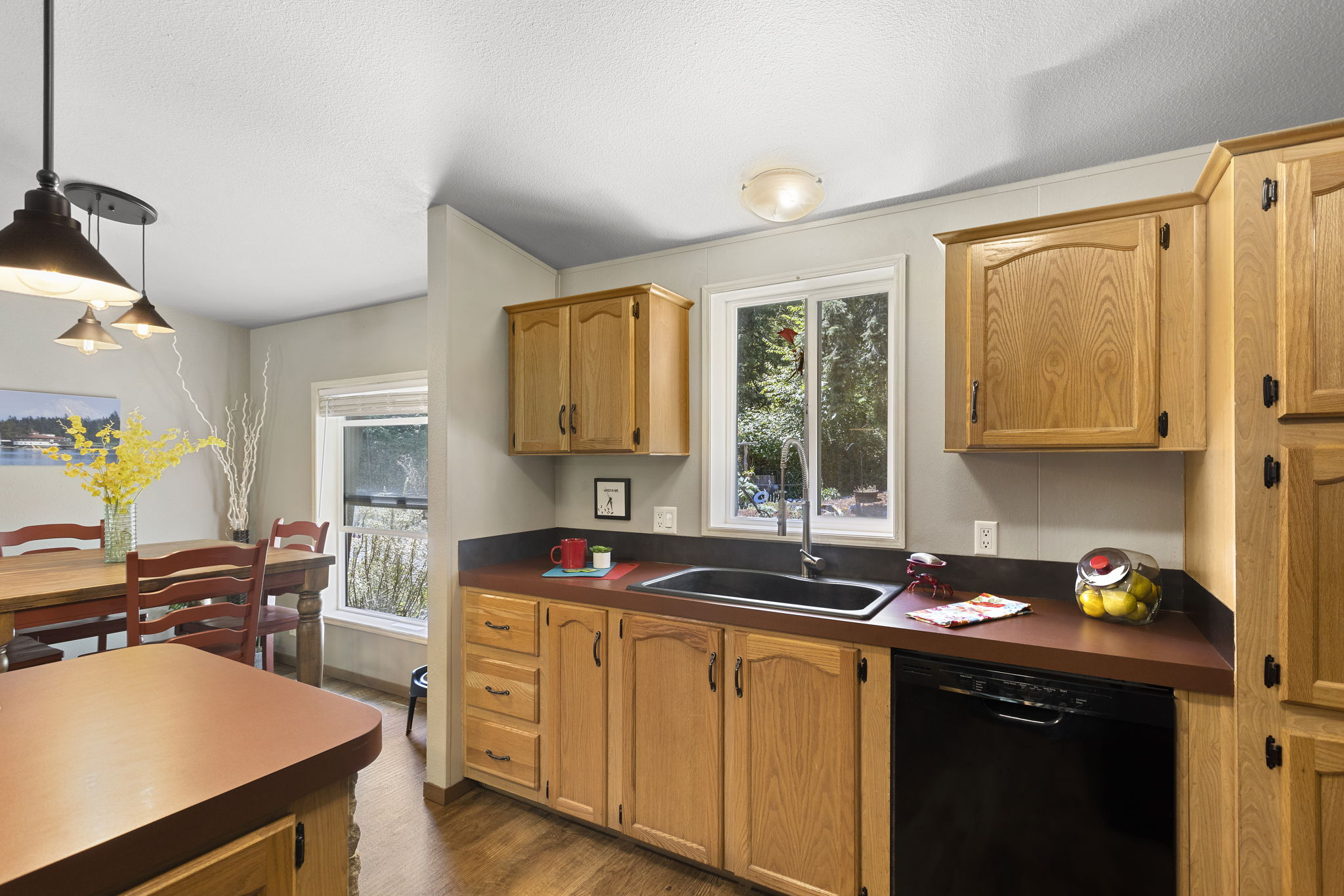 Large kitchen sink with window!