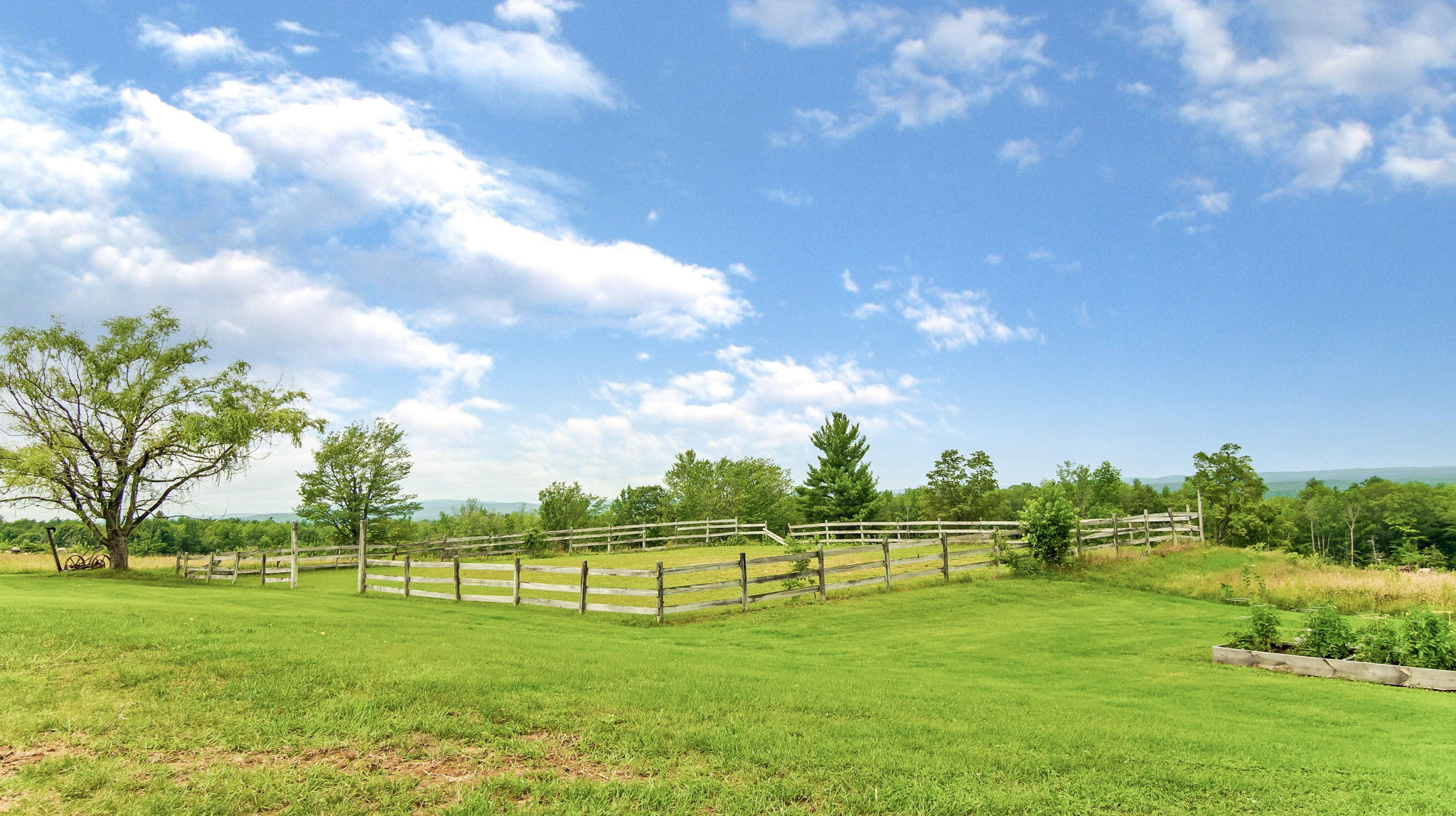 Paddock For Your Horses