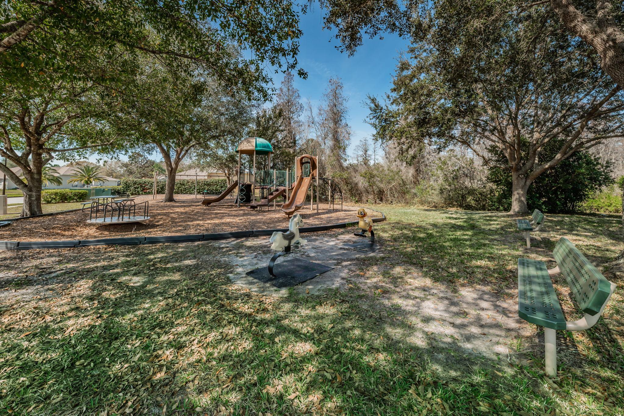 8-Trinity Oaks Park