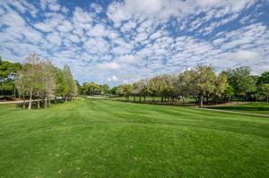 Golf Course1