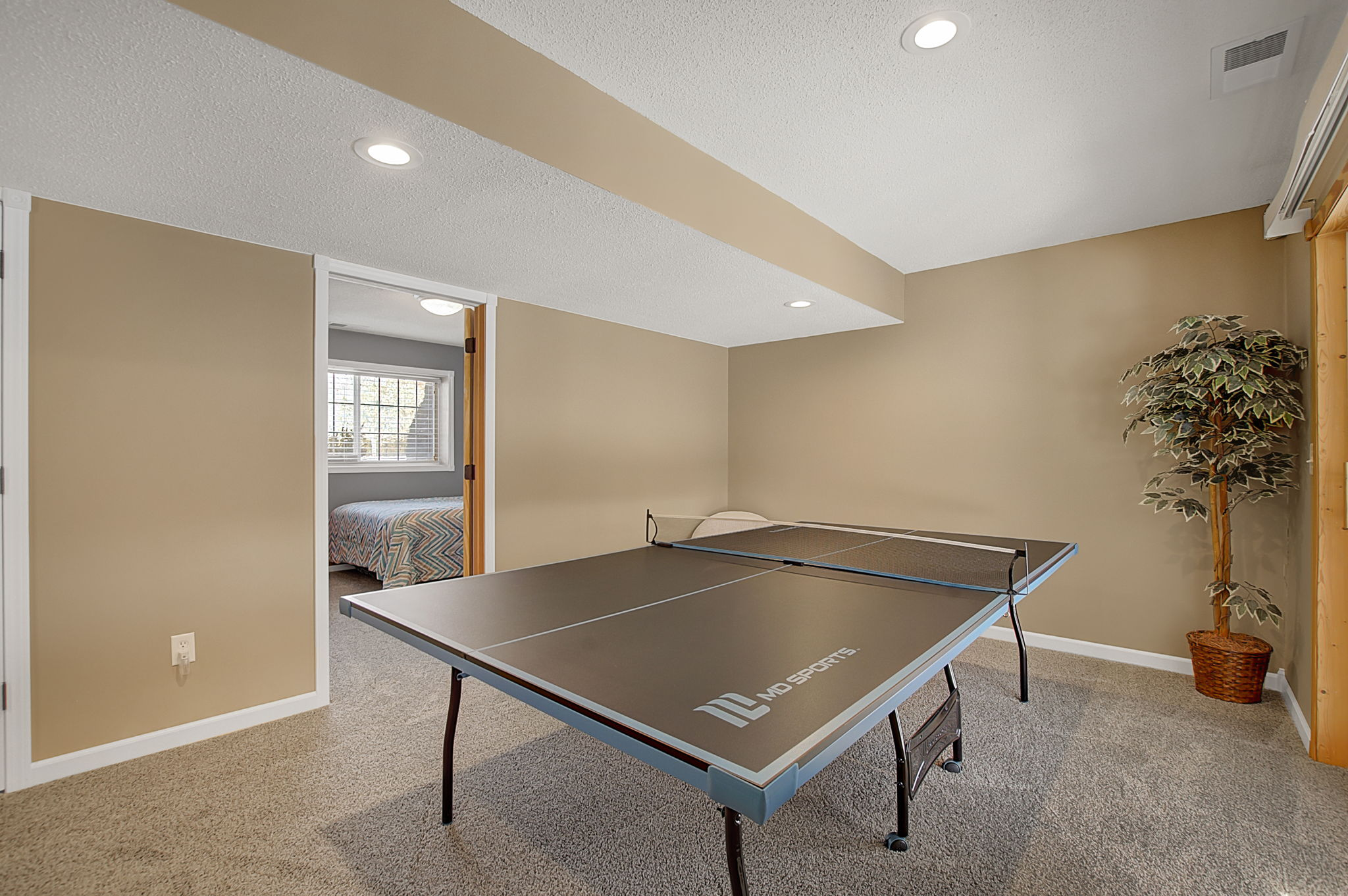 Lower level has room for a ping pong table or create your own space.