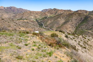 12500 Pacific View Dr, Malibu, CA 90265, US Photo 22