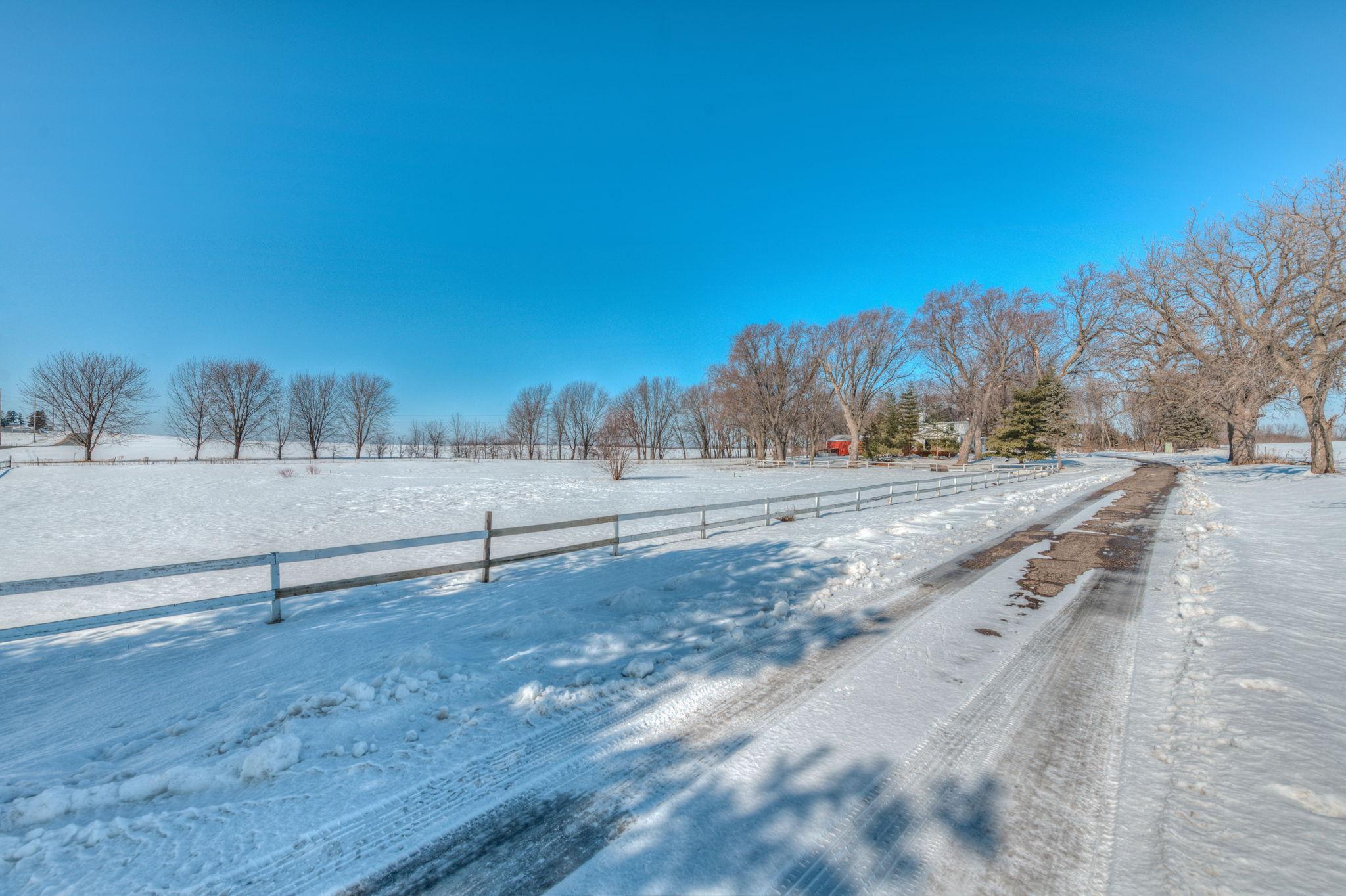 Driveway/Pasture