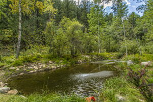 7647 Lefthand Canyon Dr, Jamestown, CO 80455, USA Photo 42