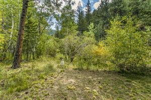 7647 Lefthand Canyon Dr, Jamestown, CO 80455, USA Photo 41