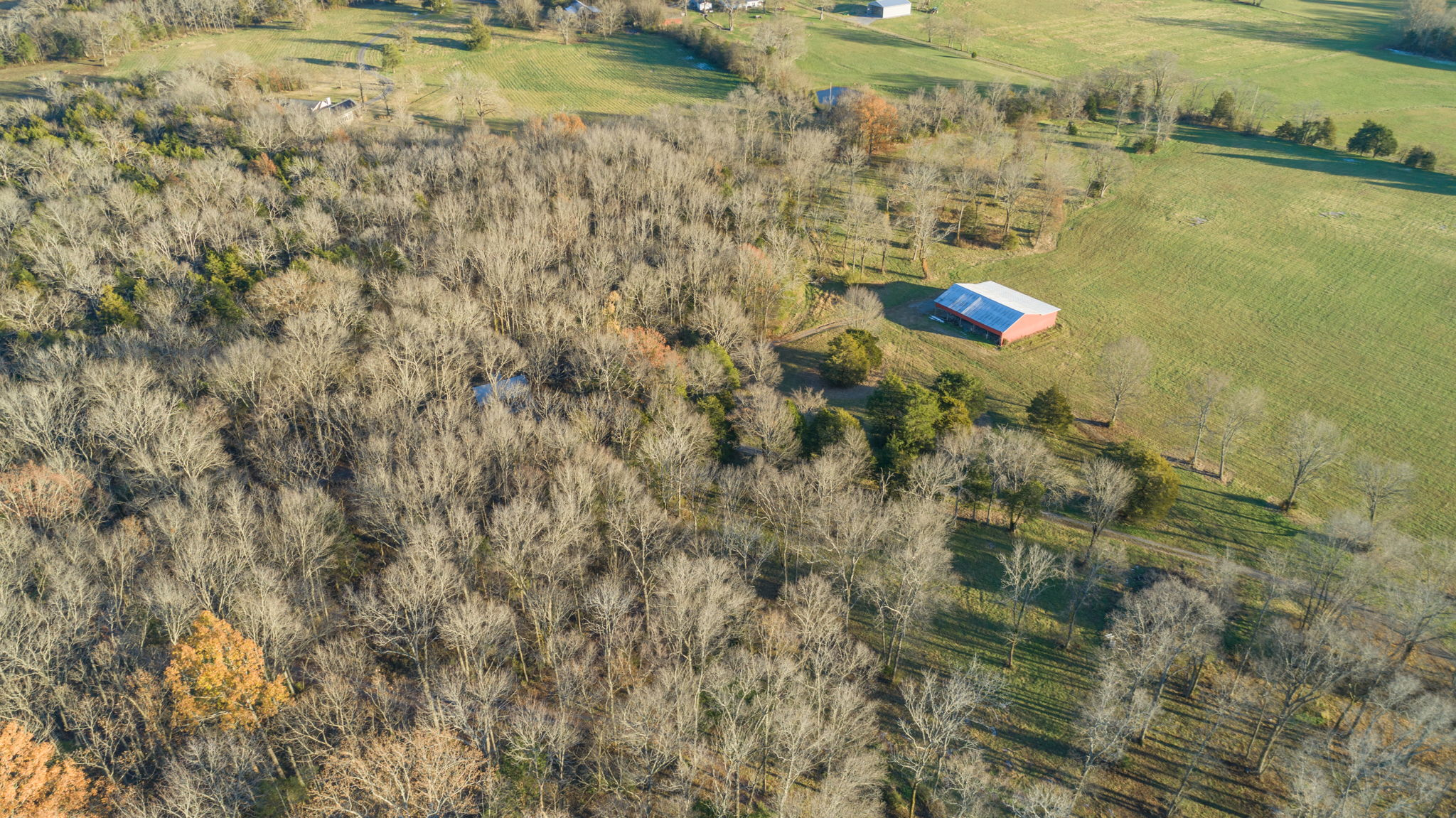 1411 TN-82 S, Shelbyville, TN 37160, US Photo 146