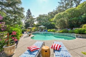 2441 Tice Valley Blvd, Walnut Creek, CA 94595, USA Photo 46