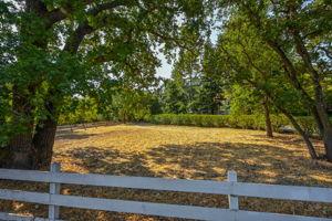 2441 Tice Valley Blvd, Walnut Creek, CA 94595, USA Photo 61
