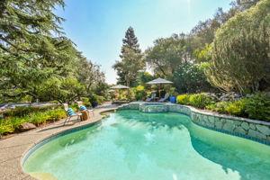2441 Tice Valley Blvd, Walnut Creek, CA 94595, USA Photo 47