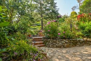 2441 Tice Valley Blvd, Walnut Creek, CA 94595, USA Photo 42