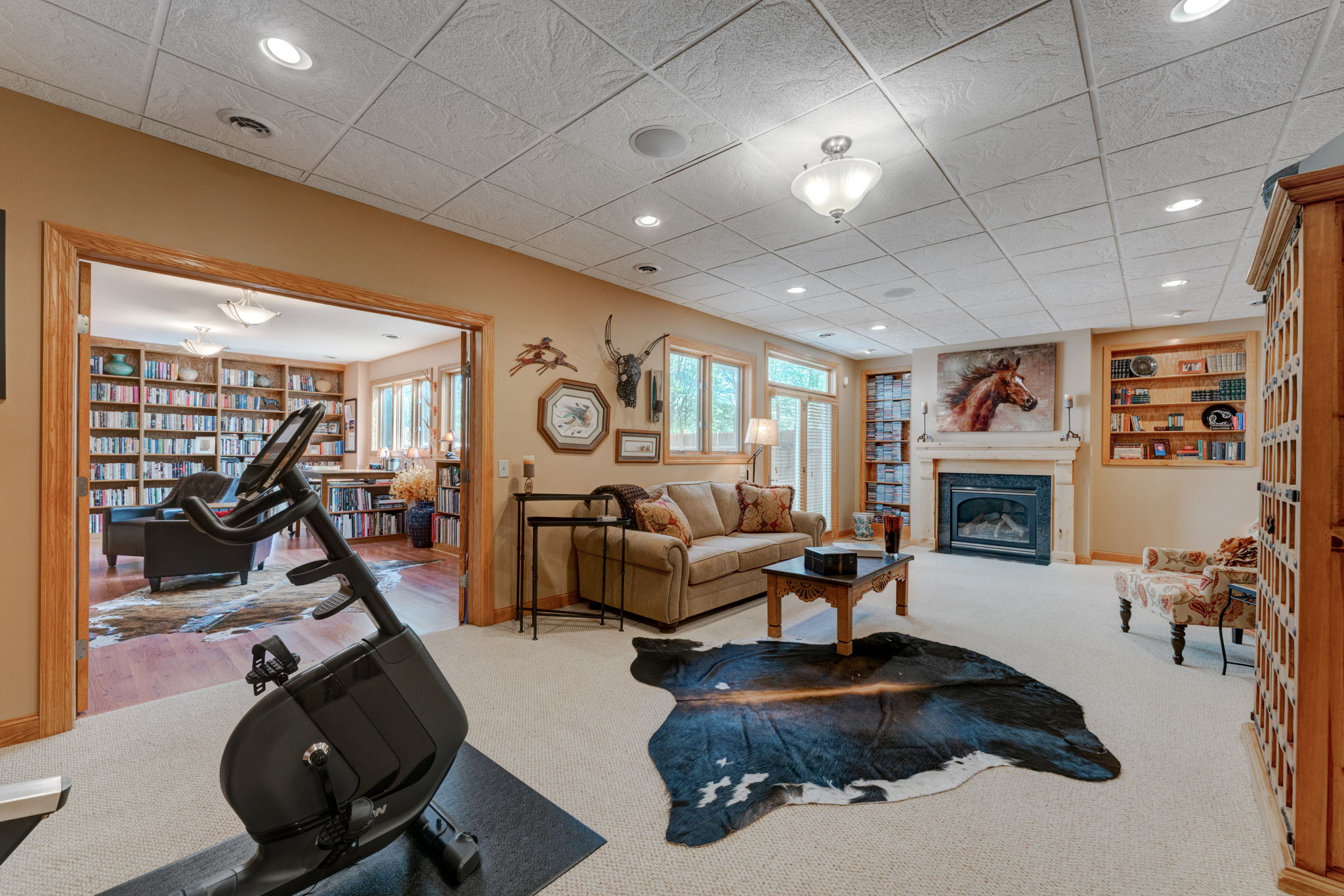 Inviting Family Room in Walk-Out Lower Level