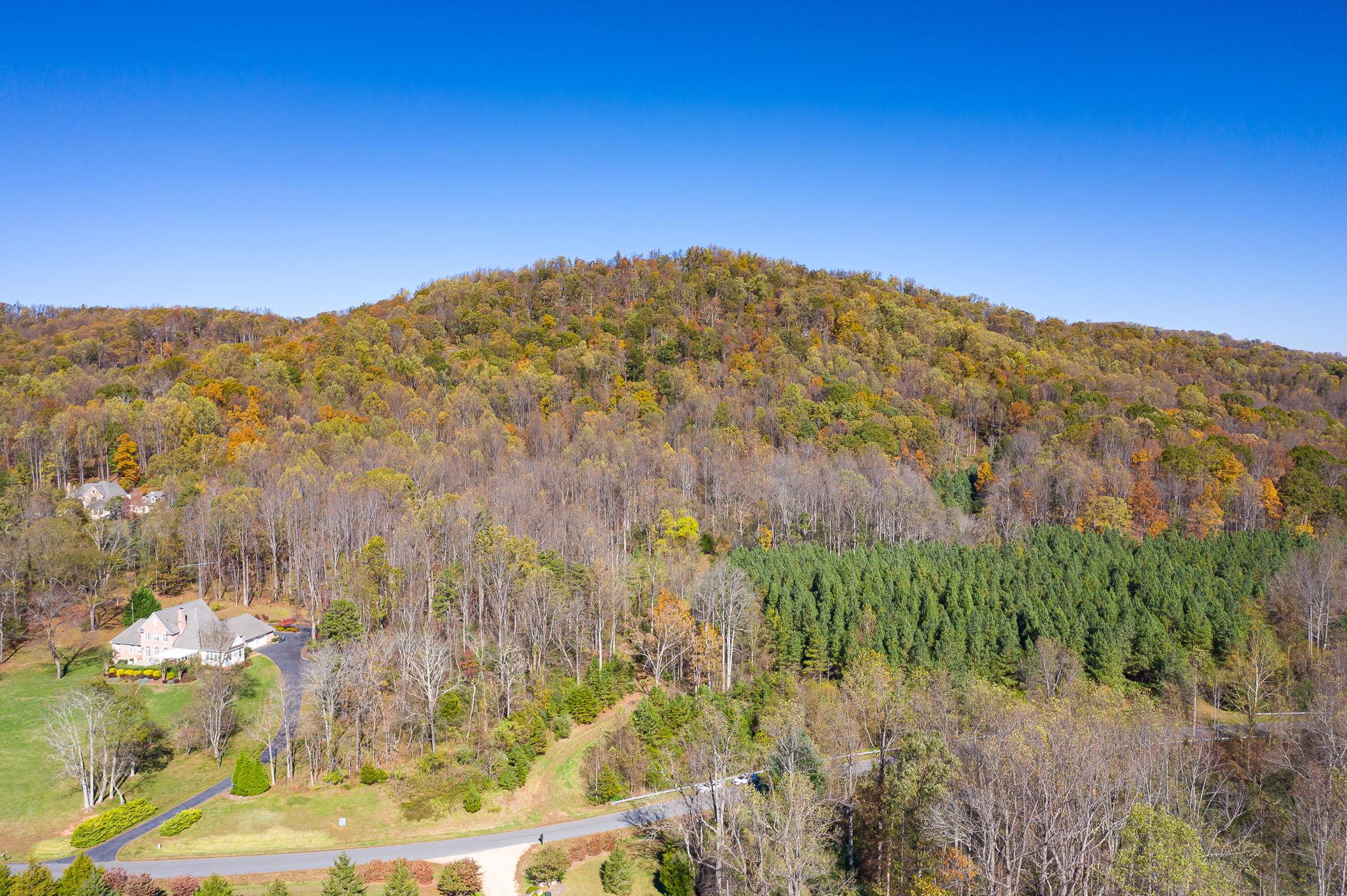 Blandemar Farm Estates , Charlottesville, VA 22903, US Photo 34