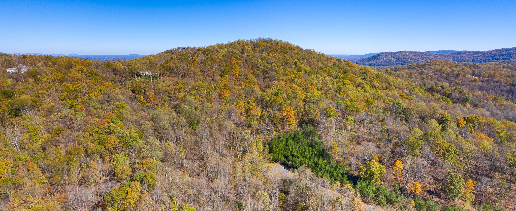 Blandemar Farm Estates , Charlottesville, VA 22903, US Photo 61
