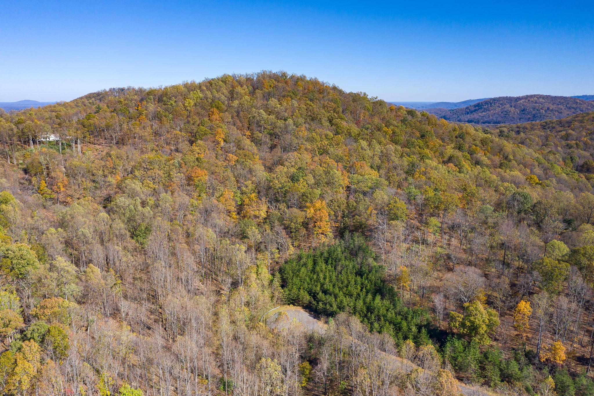 Blandemar Farm Estates , Charlottesville, VA 22903, US Photo 58