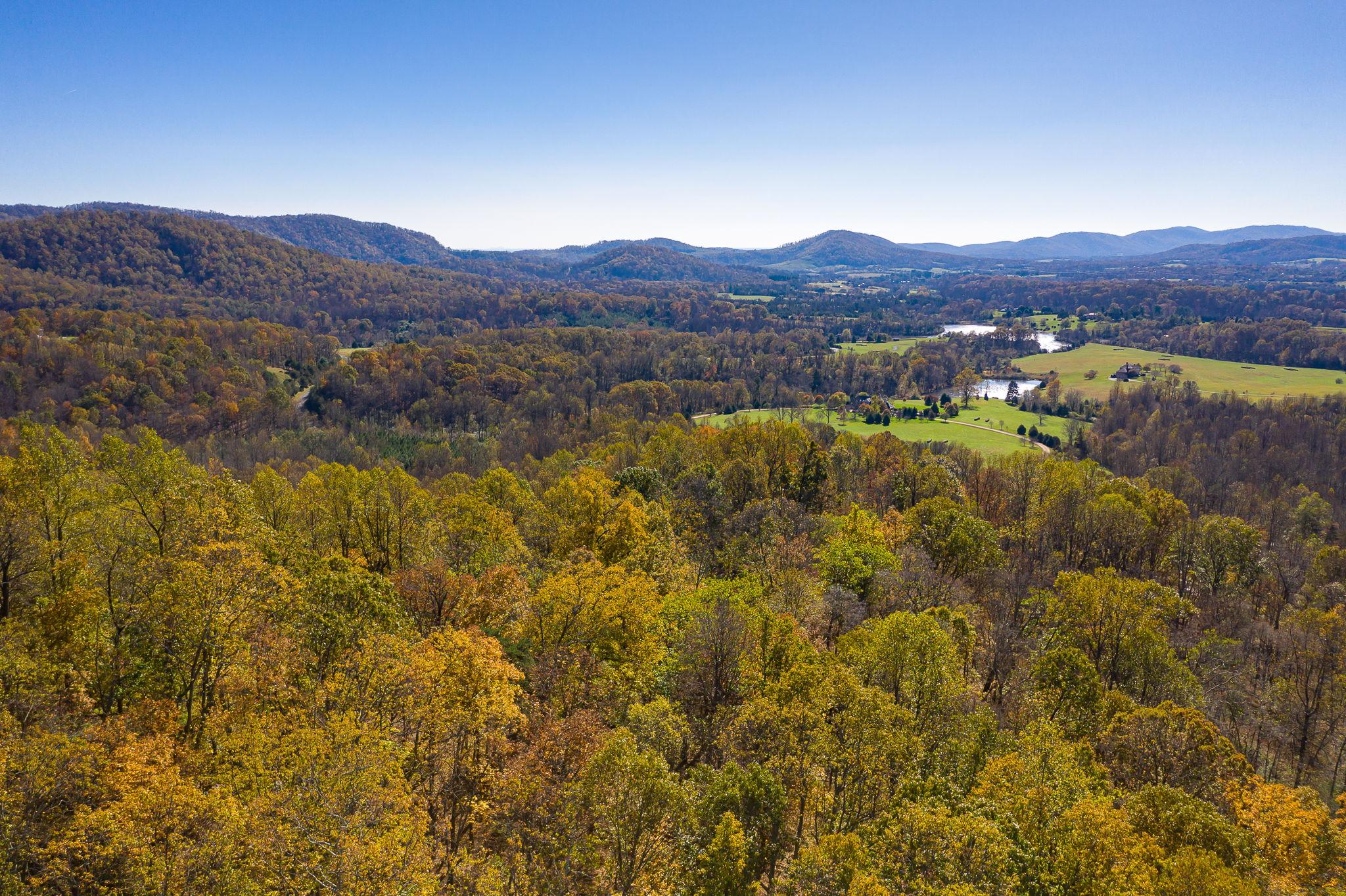 Blandemar Farm Estates , Charlottesville, VA 22903, US Photo 55