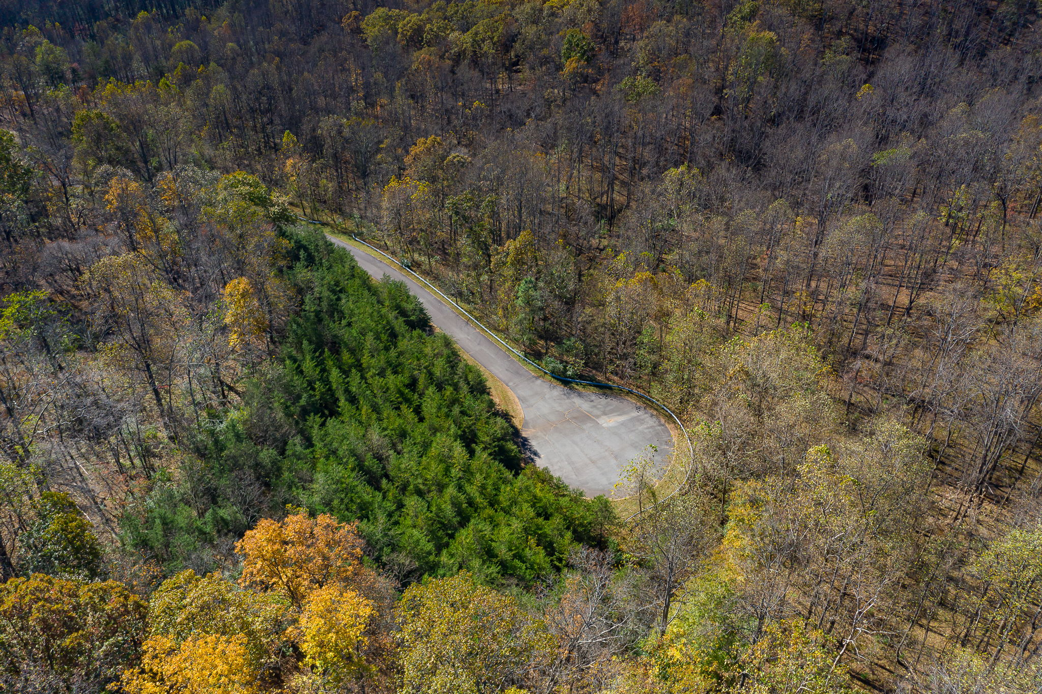 Blandemar Farm Estates , Charlottesville, VA 22903, US Photo 57