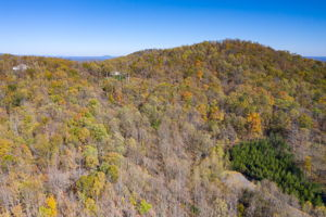 Blandemar Farm Estates , Charlottesville, VA 22903, US Photo 59