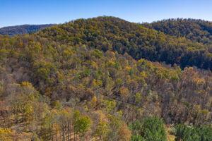 Blandemar Farm Estates , Charlottesville, VA 22903, US Photo 22