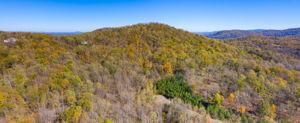 Blandemar Farm Estates , Charlottesville, VA 22903, US Photo 60