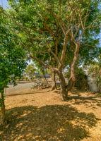 697 Goodhope St, Oak View, CA 93022, USA Photo 25