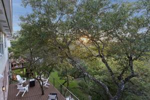 9700 Crenata Cove, Austin, TX 78759, USA Photo 51