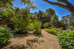 35 Owl Hill Rd, Orinda, CA 94563, USA Photo 43