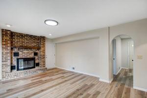Den/Fireplace