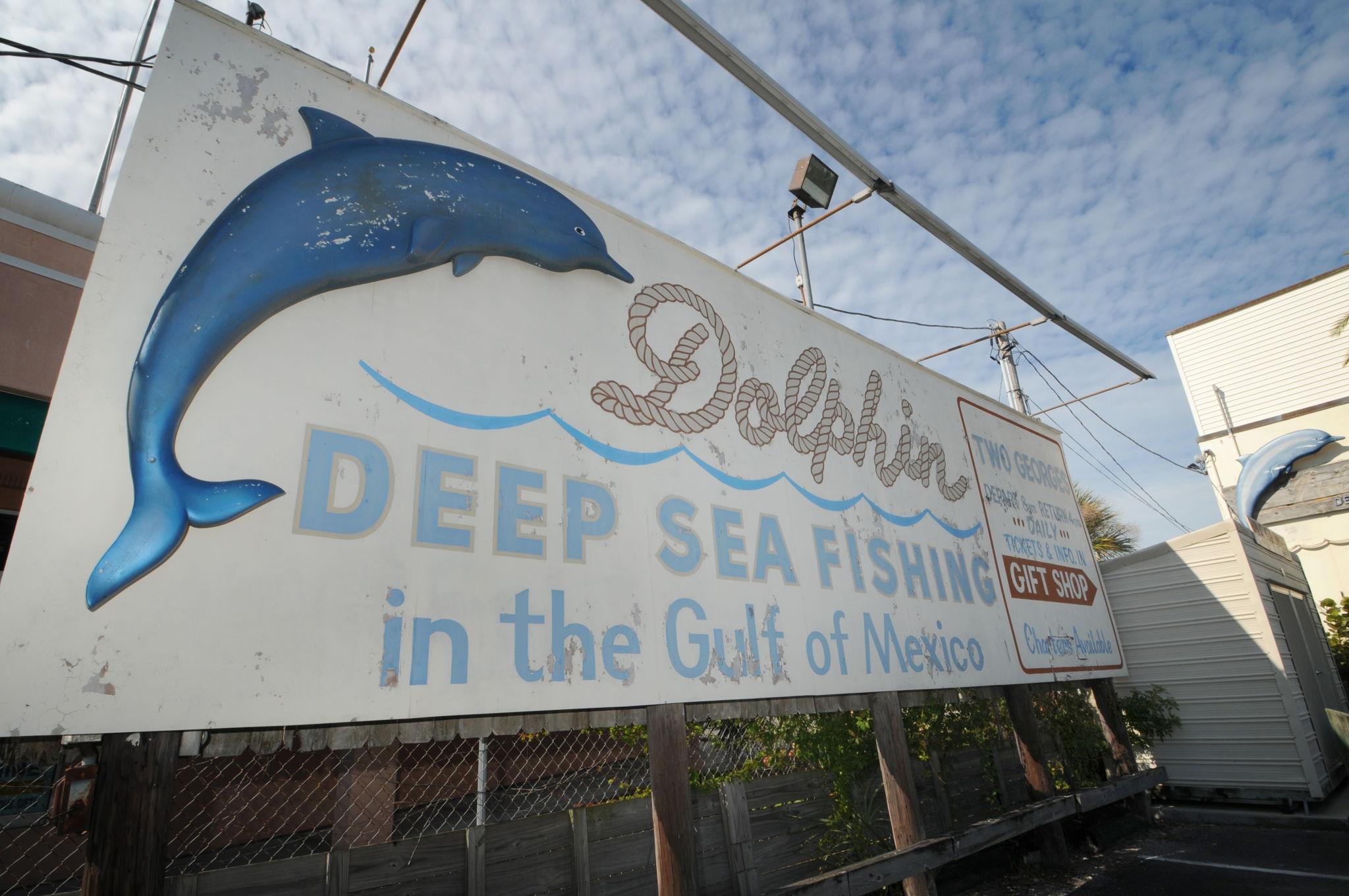 Sponge Docks5