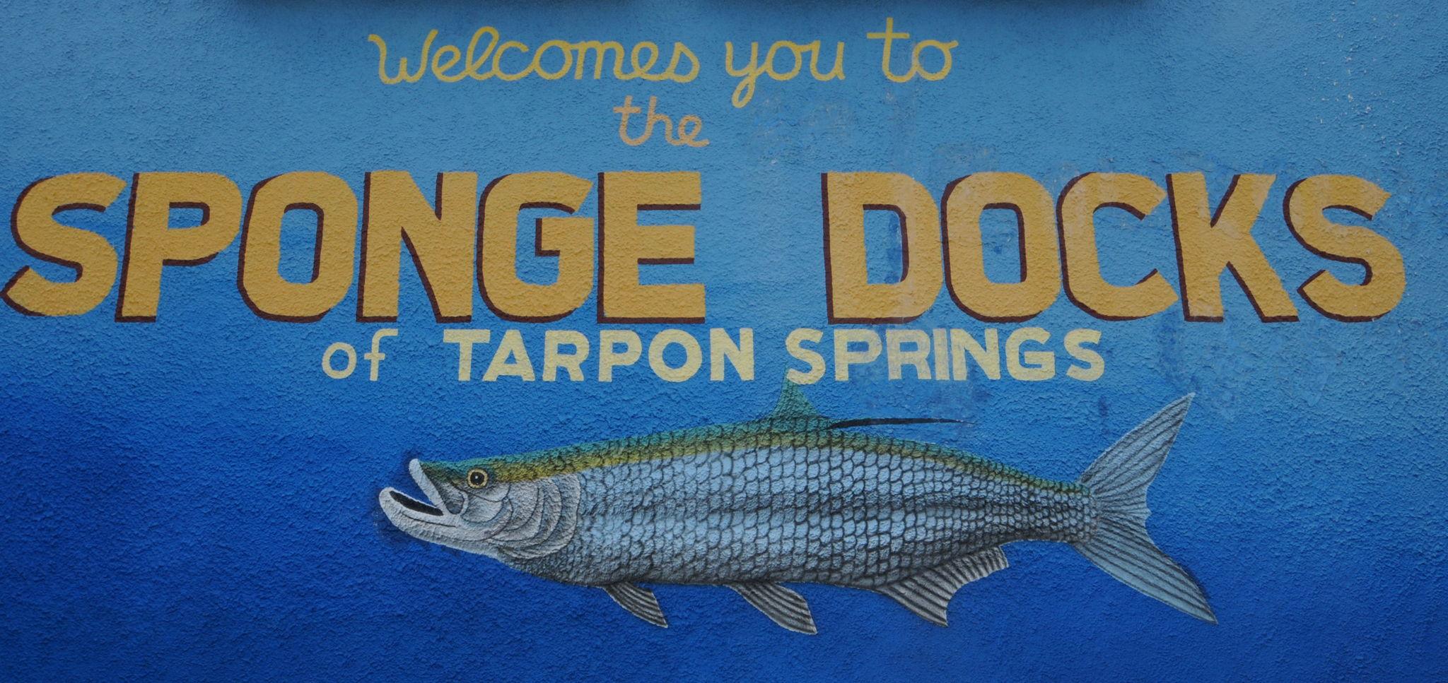 Sponge Docks20