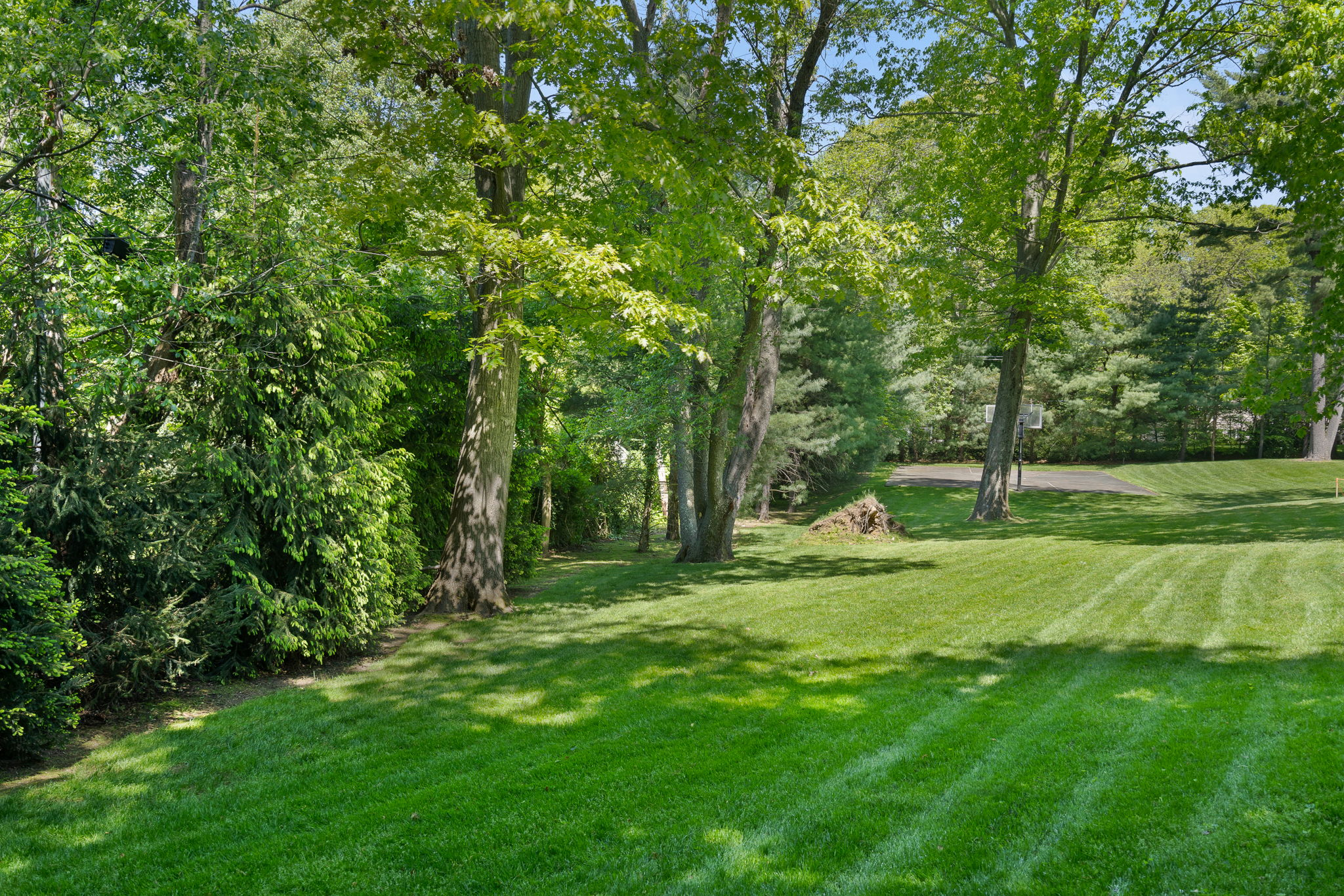 2a Melby Ln, East Hills, NY 11576, US Photo 93