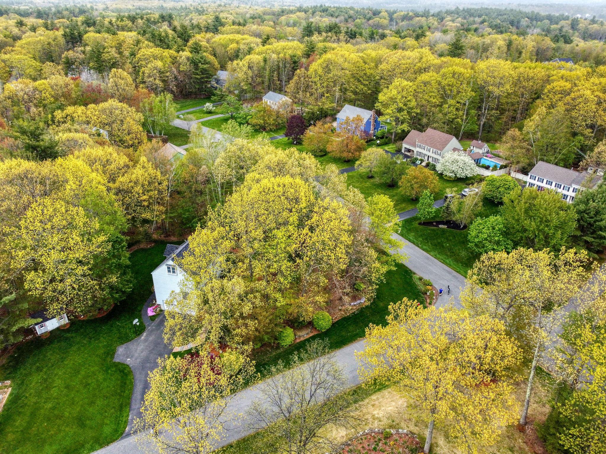 Neighborhood aerial