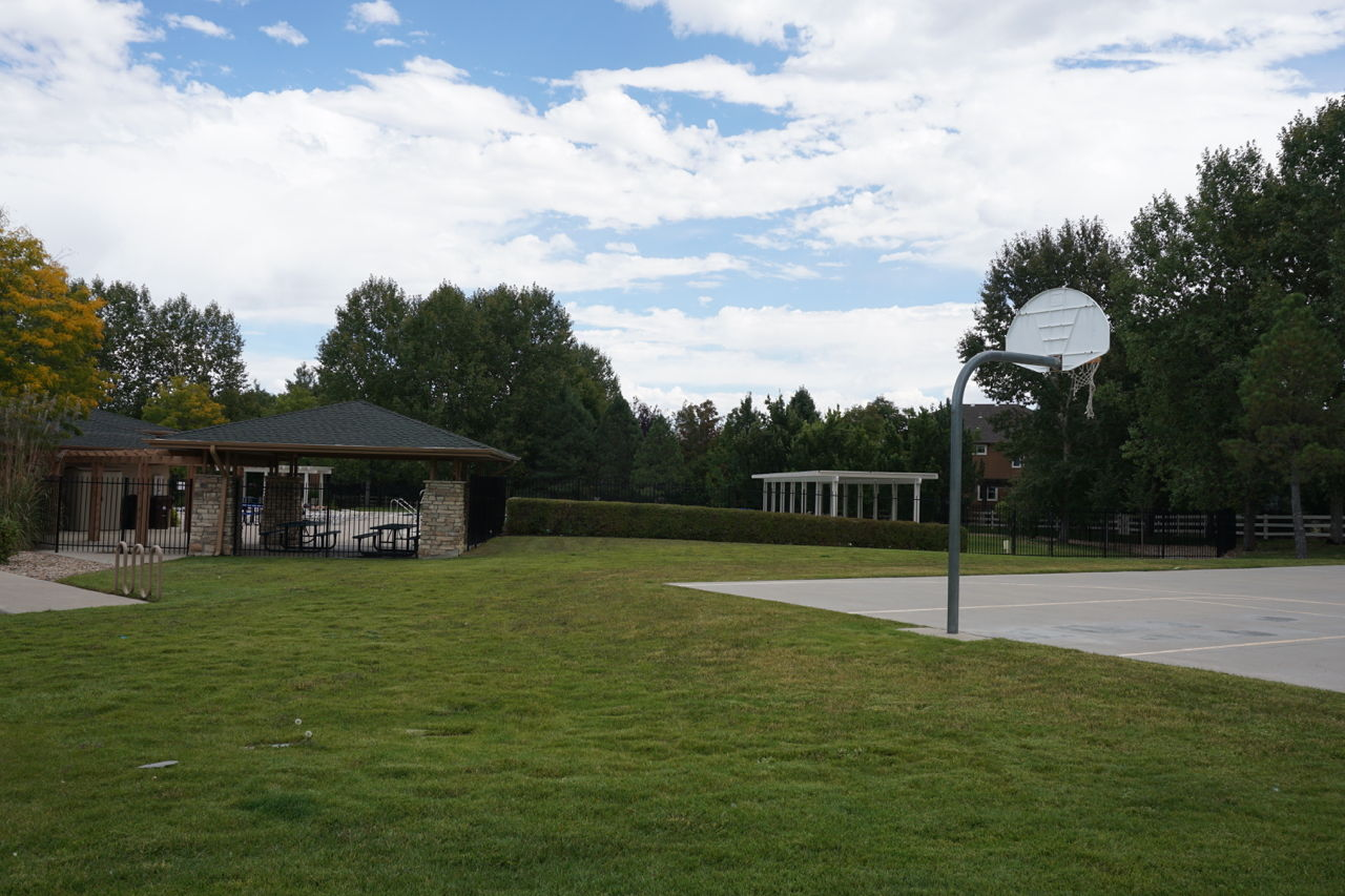 Basketball court new pool