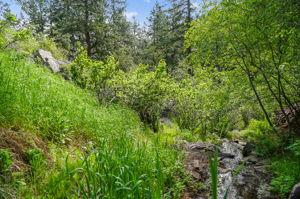 Sky Meadow Ln, Golden, CO 80401, US Photo 22