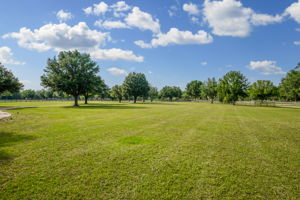 11939 Pasco Trails Blvd, Spring Hill, FL 34610, US Photo 49
