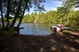 341 Hasketts Dr, Port Severn, ON L0K 1S0, Canada Photo 39