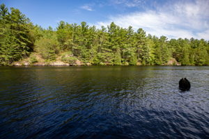 341 Hasketts Dr, Port Severn, ON L0K 1S0, Canada Photo 46